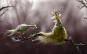 Обои лес, птица, арт, снег, девушка, поводок, ветка