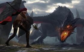 Картинка девушка, скалы, дракон, копье, щит