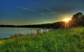 Картинка трава, солнце, закат, природа, река, фото, рассвет