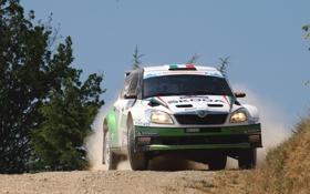 Обои Авто, Спорт, Машина, Гонка, Занос, День, WRC