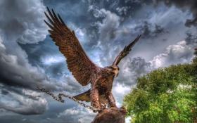 Картинка скульптура, облака, цепь, орел, небо, металл