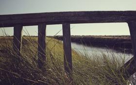 Картинка дорога, небо, трава, вода, природа, дерево, балки