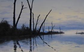 Обои деревья, природа, озеро, отражение, стволы, палки, арт