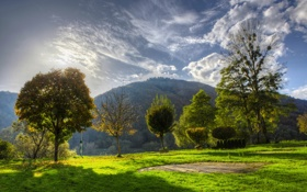 Картинка облака, трава, небо, солнце, зелень, поляна, деревья