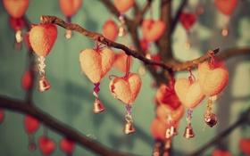 Обои цветы, веточка, фон, widescreen, обои, сердце, ветка