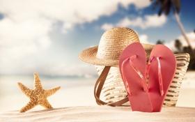 Обои песок, пляж, лето, шляпа, морская звезда, summer, сумка