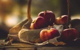 Обои яблоки, еда, фрукты