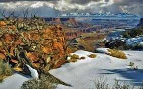 Обои США, скалы, Юта, деревья, каньон, горы, снег