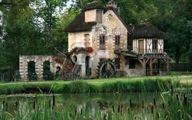 Картинка лес, пруд, лето, зелень, деревня, Марии-Антуанетты, дома