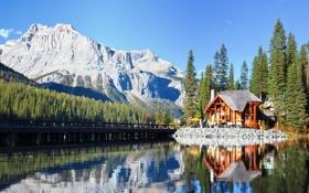 Картинка зелень, вода, деревья, пейзаж, горы, природа, озеро