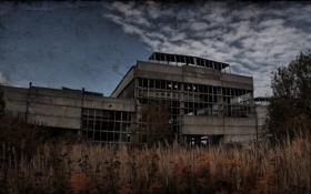 Обои небо, растения, stalker, постройка, S.T.A.L.K.E.R, развалина