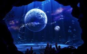 Картинка рыбы, фантастика, планеты, краб, кораллы, арт, подводный мир
