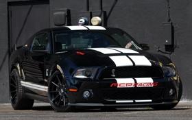 Обои авто, машины, обои, mustang, ford, shelby, auto