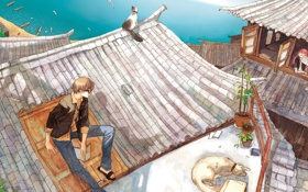Обои крыша, море, кот, настроение, чайки, дома, аниме