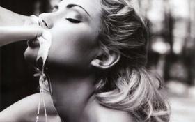 Картинка молоко, марина шако, испачкалась