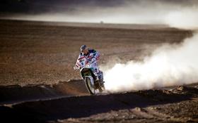 Картинка песок, пейзаж, обои, гонка, спорт, пустыня, скорость