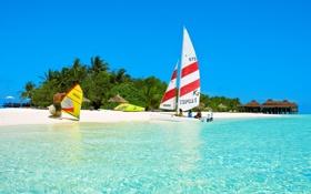 Картинка море, небо, пальмы, люди, лодка, остров, парус