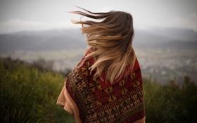 Картинка девушка, ветер, волосы, блондинка