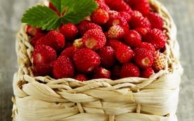 Обои ягоды, корзина, земляника, berries, basket, strawberries