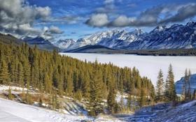 Обои небо, зима, облака, горы, лес, снег