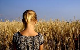 Обои dress, woman, yellow, blonde, wheat