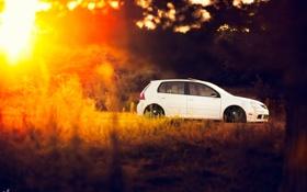 Картинка белый, volkswagen, день, солнечно, гольф, golf, gti