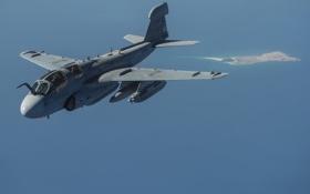 Картинка самолёт, Grumman, Prowler, палубный, EA-6B