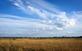 Обои поле, движение, Небо, Облака, день, простор, Россия
