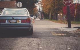 Обои silver, осень, сзади, серебристая, дорога, BMW, E34