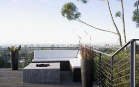 Обои небо, ветки, дизайн, диван, дерево, вид, интерьер