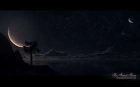 Обои море, звезды, пальмы, планеты, ночное небо, фантастический пейзаж