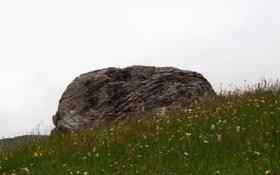 Обои небо, трава, холм, бугор, камень