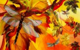 Картинка природа, лист, дерево, рисунок, цвет, крылья, ветка