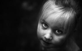 Обои взгляд, портрет, девочка
