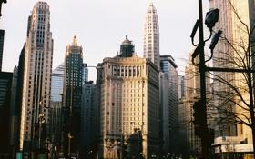 Обои осень, небо, здания, небоскребы, USA, америка, чикаго