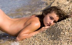 Картинка пляж, девушка, галька, мокрая, шатенка, lily c, raisa