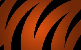 Обои оранжевый, чёрный, Текстуры, обои для рабочего стола