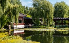 Обои деревья, пруд, парк, отражение, Германия, пагода, солнечно