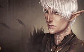 Обои эльф, перья, воин, арт, Dragon Age 2, клейма, Fenris
