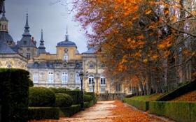 Обои осень, фонари, аллея, дворец