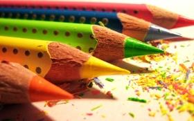 Обои зелёный, синий, оранжевый, жёлтый, карандаши, красный