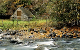 Картинка осень, лес, листья, река, ручей, камни, Природа