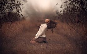 Картинка природа, волосы, девочка, взмах, боке
