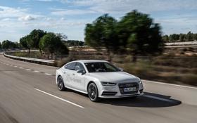 Картинка белый, Audi, ауди, седан, quattro, h-tron