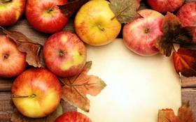 Картинка яблоки, фрукты, листики, apples