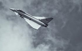 Картинка полет, истребитель, многоцелевой, Eurofighter Typhoon