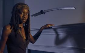 Картинка The Walking Dead, Ходячие мертвецы, Michonne, Danai Gurira