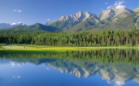 Обои лес, горы, озеро, Канада, национальный парк