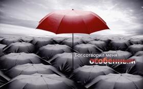 Обои зонты, обои, надпись, разное