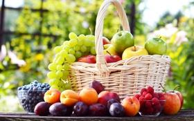 Обои яблоки, виноград, сливы, корзина, фрукты, малина, ягоды